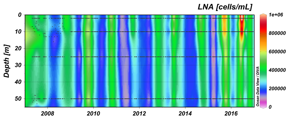 Concentrations of LNA